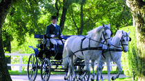 Private tour to Skocjan caves and Lipica stud farm, Ljubljana, Private Sightseeing Tours
