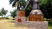 Hampden Rum Tour, Falmouth, Cultural Tours