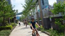 Small Group Tokyo Biking Tour, Tokyo, Full-day Tours