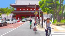 Small-Group Tokyo Biking Tour