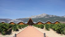 Rioja Wineries Tour from San Sebastian with Lunch, San Sebastian
