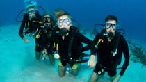 St Maarten Scuba Diving for Certified Divers, Philipsburg, Day Cruises