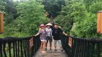 Qingcheng Mountain and Dujiangyan Irrigation Private Day Tour, Chengdu, Private Sightseeing Tours