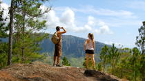 Oahu Rainforest Hiking Adventure, Oahu, Hiking & Camping