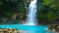 Rio Celeste Hike with Lunch Included, La Fortuna, Hiking & Camping