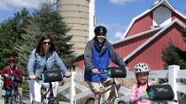 Kids Bicycle Tour