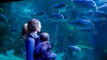 SEA LIFE Sydney Aquarium Entrance Ticket, Sydney, Attraction Tickets