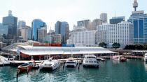 Sydney Attraction Pass: Darling Harbour Experience Ticket, Sydney