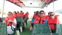Boat Tour of Lake Arenal, La Fortuna