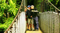 Mistico Park Hanging Bridges Guided Tour, La Fortuna, Nature & Wildlife
