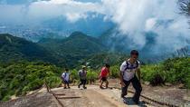Pico da Tijuca Small-Group Hiking Tour, Rio de Janeiro, City Tours