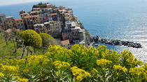 Authentic Cinque Terre Tour, Genoa, Private Sightseeing Tours