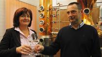 Bratislava Tasting Spirits and Local Cuisine Tour