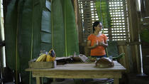 Half-Day Jaguar, Chocolate, and Waterfall Tour in Costa Rica, Limon, Cultural Tours
