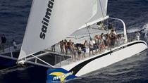 Luxury Catamaran Cruise from Oahu, Oahu, Catamaran Cruises