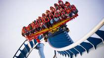 Busch Gardens Williamsburg, Washington DC, Theme Park Tickets & Tours
