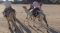 Camel Riding Private Tour from Sharm El Sheikh, Sharm el Sheikh, Nature & Wildlife