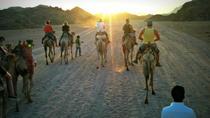 Small Group Desert Safari from Sharm el Sheikh: Camel Riding, Stargazing, Bedouin Dinner and Show,...