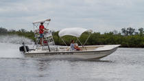Private Scallop Quest - 6 Passenger Vessel from Homosassa, Crystal River, Nature & Wildlife