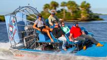 St Martins Gran Dolphinismo Small Group Airboat Adventure and Dolphin Tour, Crystal River, Airboat ...