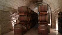 Full-day Salento Wine and Food Tour , Lecce, Wine Tasting & Winery Tours