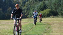 Mountain Biking from Prague: Day Trip Around the River Sazava, Prague, Bike & Mountain Bike Tours