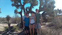 Joshua Tree National Park Van Tour, Palm Springs