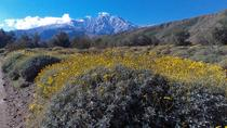 Wildlands Preserve Nature Tour, Palm Springs, Eco Tours