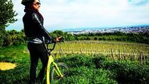 3-hour Kick Bike Tour Through Vienna with Locals, Vienna, Bike & Mountain Bike Tours