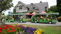 Christchurch Botanic Gardens Tour with Optional Hop-On Hop-Off Tram Gondola and Avon River Punting, ...