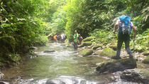 3-Day 2-Night Darien Jungle Exploration from Panama City, Panama, Panama