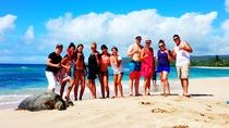 Local Experts Private Tours, Oahu, Private Sightseeing Tours