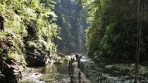 1 Day Private Tour of Most Beautiful Heishan Valley in Chongqing Including Lunch, 重慶