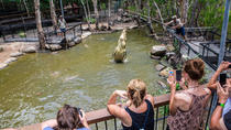 Cairns Landausflug: Hartley's Crocodile Adventure Tagesausflug, Cairns & the Tropical North, Ports of Call Tours