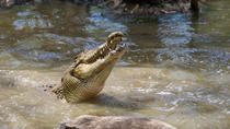 Cairns Shore Excursion: Hartley's Crocodile Adventure Day Trip, Cairns & the Tropical North, ...