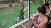 Cairns Shore Excursion: Hartley's Crocodile Adventure Day Trip