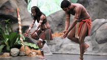 Tjapukai Indigenous Cultural Day Trip from Cairns Including Torres Strait Dance Performance and ...