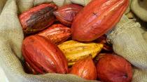 Exclusive Tropical Treats, Gourmet Coffee & Hawaiian Chocolate Tour, Oahu, Chocolate Tours