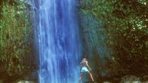 Manoa Waterfall Small Group Adventure, Oahu, Walking Tours