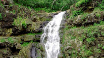 Ultimate Circle Island Adventure with Waimea Waterfall, Oahu, null