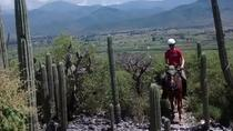 Exotic Flora Half-Day Guided Horseback Riding Tour, Oaxaca