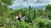 Exotic Flora Half-Day Guided Horseback Riding Tour, Oaxaca, Horseback Riding