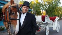 Private Horse-Drawn Carriage Tour of Minneapolis, Minneapolis-Saint Paul