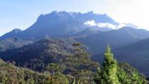 Kinabalu Park & Poring Hot Spring Tour, Kota Kinabalu, Thermal Spas & Hot Springs