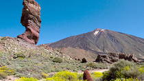El Teide National Park Half-Day Tour, Tenerife, Half-day Tours