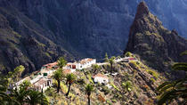 Tenerife Teide National Park Tour including Volcano Teide and Masca, Tenerife, Full-day Tours