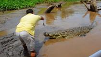 San Jose Crocodiles Safari and canopy private 7 in 1, San Jose, Ports of Call Tours