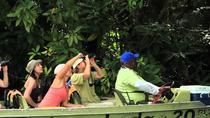 Tortuguero Canals Tour, Limon, Day Cruises