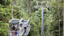 Veragua Rainforest aerial tram, Limon, Ports of Call Tours