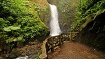 Waterfall Gardens y Dota coffe tour, Puntarenas